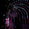 Festival of Lights Holiday celebration at Moody Gardens in Galveston.