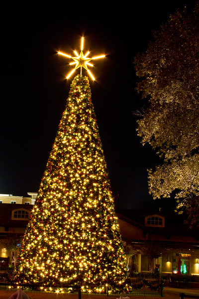Christmas Lights at night in The Woodlands Town Center, The Woodlands, Texas.