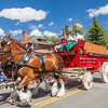 Clydesdale horses at Breckenridge Fourth of July Parade.