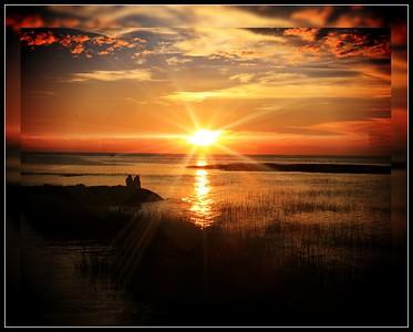 Cape Cod_2014_0975