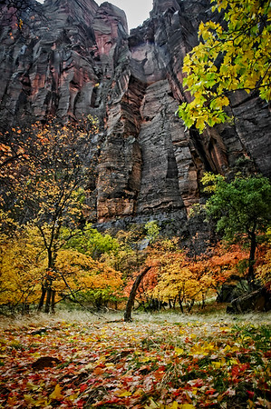 Temple of Sinawava, Zion NP