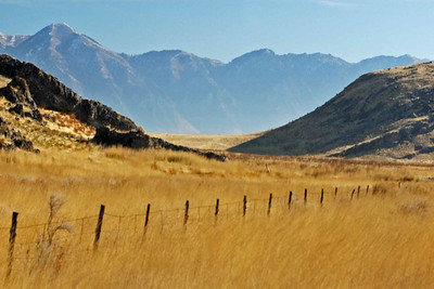 20051118-Norhtern Utah Grasslands