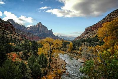 Fall on the Virgin River, Zion National Park