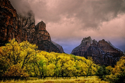 Fall at Zion National Park