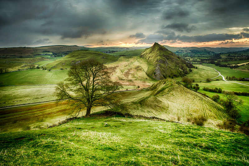 Parkhouse Hill from Chrome Hill with Tree