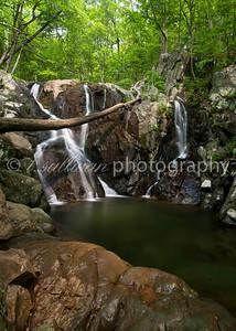 Rose River Falls in Summer