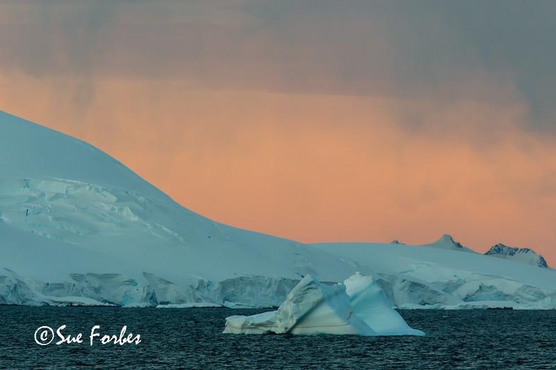 Day 8 Gerlache Strait