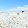Pheasant hunting in the flat lands of Colorado.  A fog overnight left every blade of grass frosted until afternoon.  Something about the combo of blue sky & white frost and hunters orange, made for great shots one after another.