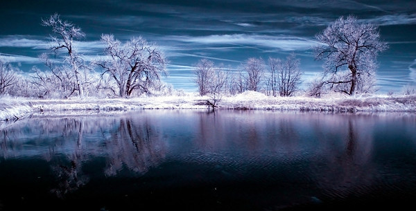Walden Ponds in Infrared -  I finally got my IR camera and filters back.  Love this camera!! :)  Handheld this shot though, so it came out super blurry and I had to bump up the ISO so I could use a shutter of 1/10 so it came out a little noisy too... but STILL!  Sweetness.