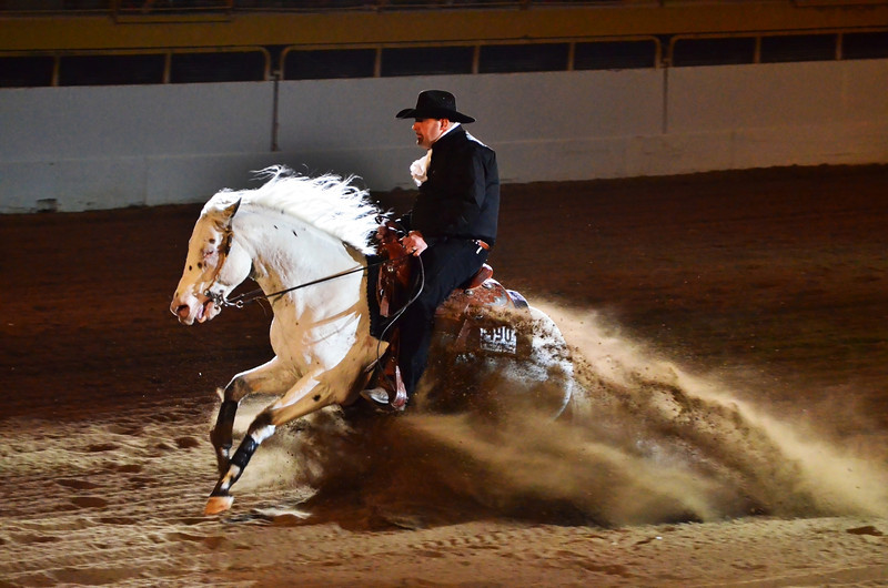 This is (maybe) my last stock show photo - I've made it there 4 times in the last week so I have tons of shots to go through.  This one was from the reigning (spelling?) event.  It looks as if the horse is shooting straight out from underground!