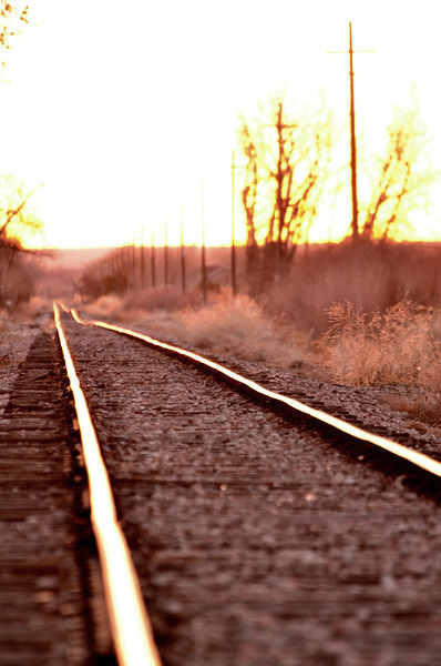 Morning on the tracks