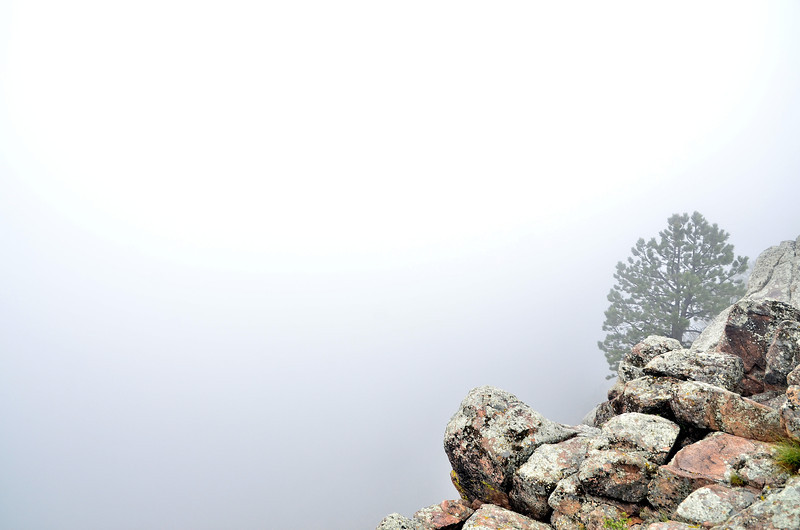 I love the featurelessness (that's a word I swear!) of a foggy day. You don't realize it in this photo, but that tree at the edge of the rocks is literally at the edge of those rocks! It's about an 80 - 120 ft cliff just beyond that point. The fog in the valley gave this shot such a cool sense of the unknown vastness of the scene - It was much more powerful to be here in person, but I tried my best to capture an image of it. That's one of the coolest yet hardest things in photography to capture I feel is feelings. To be able to try and re-create a feeling, or a sense that you had at a particular moment and share it with others so they have that same sense as if they were there originally... That is what I strive for :) <br /> <br /> Don't know if I quite got it here - but I'm happy with this shot