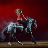 It's that time of year again here in Denver - The National Western Stock Show!!!!!  Here is a shot from the freestyle reining competition last night.  So Sweet!