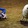 Another shot from the stock show, and from my favorite event!!  Mutton Busting!!!!   This isn't the clearest photo - this was one of my first times shooting indoors at night only using the ambient from the building.  <br /> <br /> This shot totally shows the joy of busting mutton!  I wish I had known about this sport when I was this tike's age.