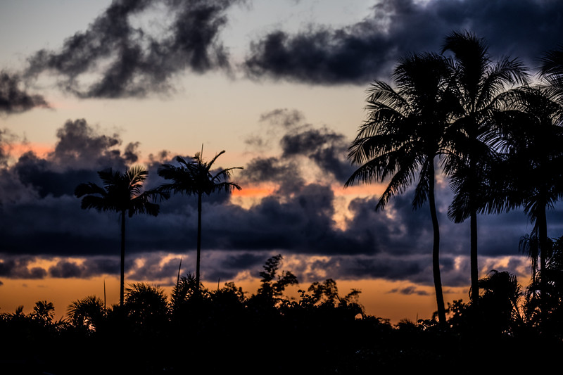 Kauai Nights