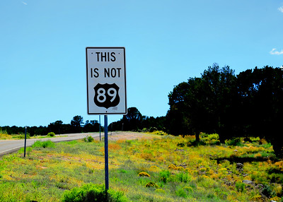 Wrong Highway!