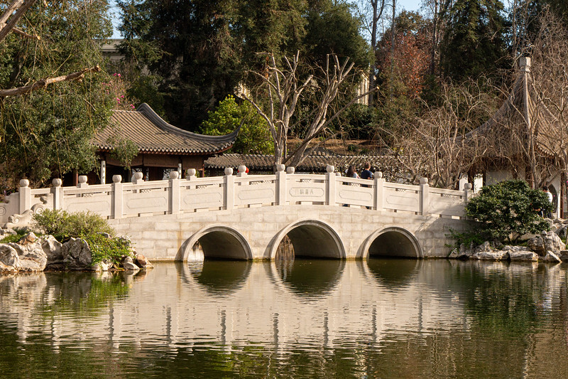 Chinese Garden Bridge