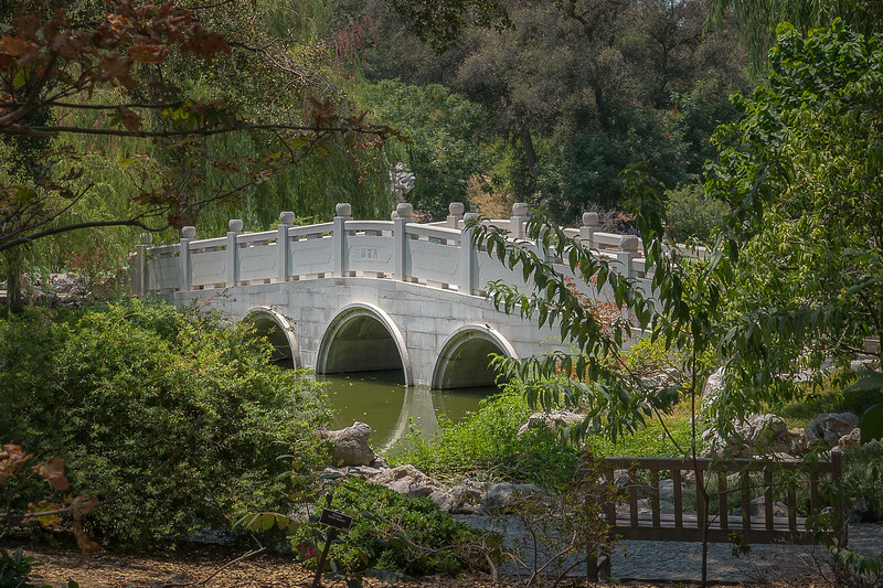 Bridge crossing the lake in the Chinese Garden at the Huntington