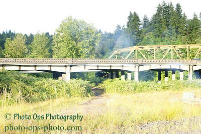 I-5 Bridge N Fork Lewis 013