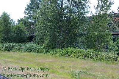 I-5 Bridge N Fork Lewis 024