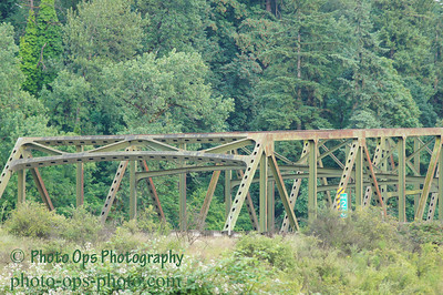 I-5 Bridge N Fork Lewis 006