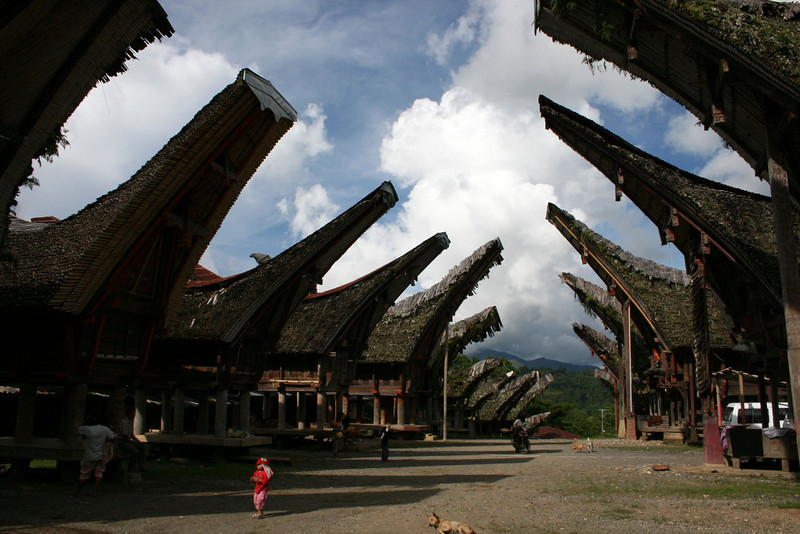 SULAWESI. TANA TORAJA.VILLAGE WITH TONGKONANS. [2]