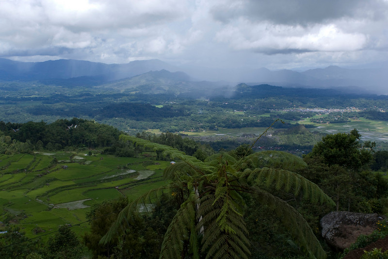 VIEW OF TANA TORAJA. SULAWESI.