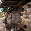 DRIED FISH. ON THE WAY TO MAKASSAR (UJUNG PANDANG). SULAWESI. INDONESIA.