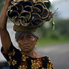 BALI. BALINESE WOMAN CARRYING BAMBOO.