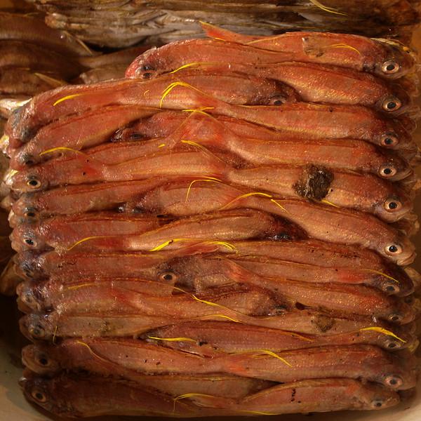 JAKARTA. FISH MARKET. [2]