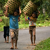 SULAWESI. TANA TORAJA. TORAJA KIDS ON THE ROAD.
