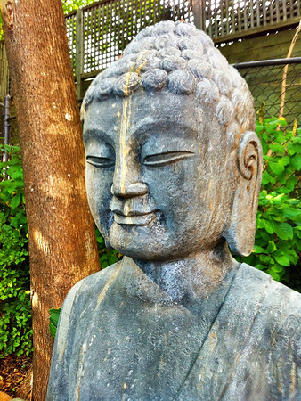 Zen Garden - Provincetown, MA