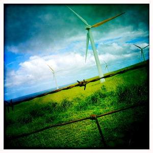 Barbed Wind Turbines. Upolu Point Wind Farm, Big Island, HI.