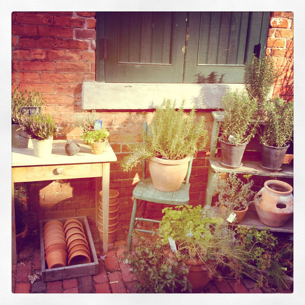 Garden shop, Distillery District, Toronto