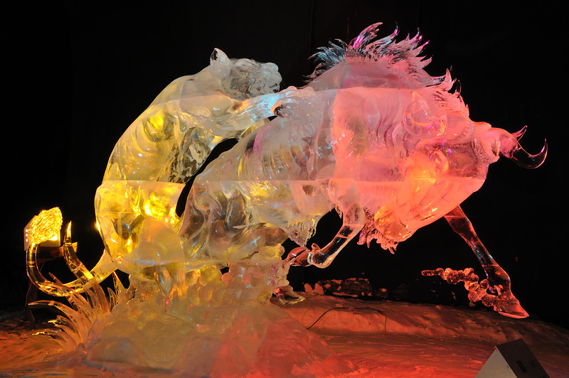 Attacking Claws Ice Sculpture - Fairbanks, Alaska