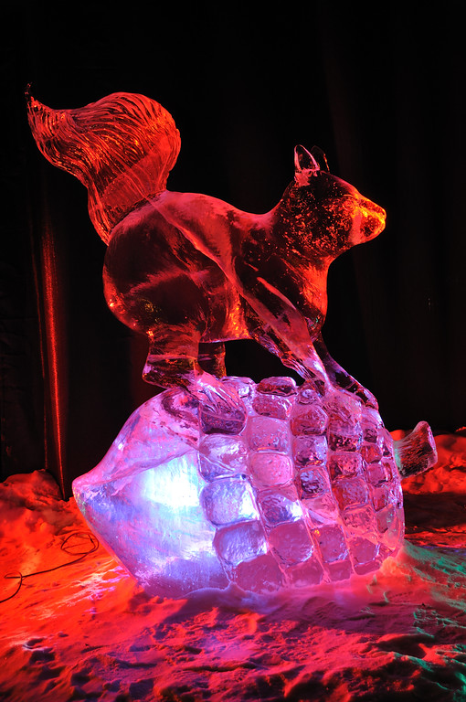 "FAIRBANKS, AK - MARCH 9: ""Squirrel"" Ice Sculpture, 2010 World Ice Art Championships March 9, 2010 in Fairbanks, Alaska"