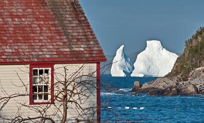 Kings Cove Iceberg 2