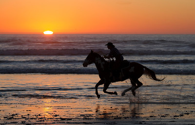 California Beach Horse and Rider at top speed