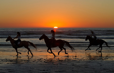 California Beach Horse and Rider Trio