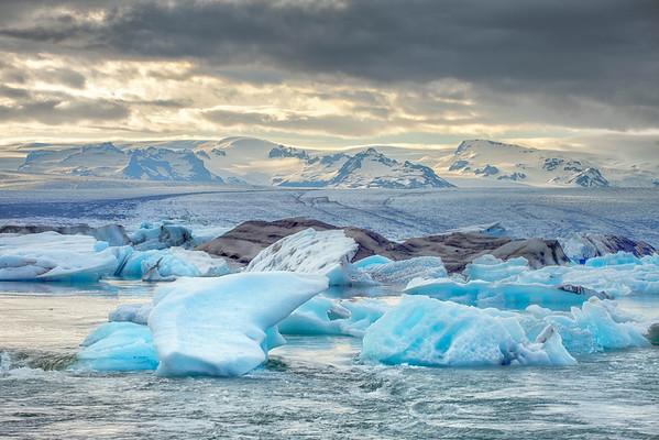 Evening Icebergs