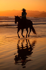 California Beach Horse and Rider with full reflection