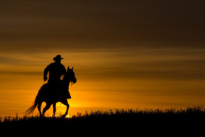 Cowboy on Horse at Sunset (single)
