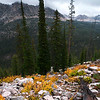 Cramer Valley, Sawtooth Mountains - Idaho<br /> <br /> Fall in the Sawtooths is a very short season. When the summer heat is gone, the plants quickly burst into color, knowing that the first snows are just a few short weeks away.