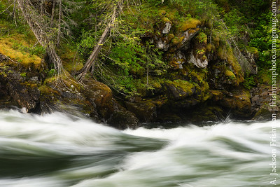 High water rapid rushing by mossy cliffs, Selway River, Idaho