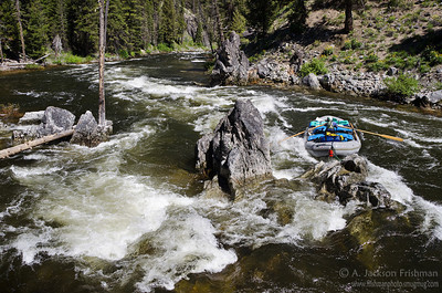 Whitewater on the upper section of Idaho's Middle Fork of the Salmon, July 2011.