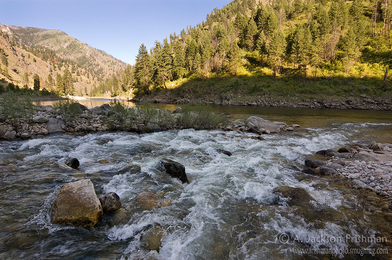 Sheep Creek enters the Salmon River, Gospel-Hump Wilderness, Idaho, July 2010.