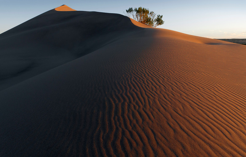 Bruneau Dunes - Idaho<br /> <br /> Bruneau Dunes State Park in southern Idaho offers North America's tallest single sand dune at 470 feet.  Unlike many dunes, these do not drift, and have remained stable for hundreds of years.