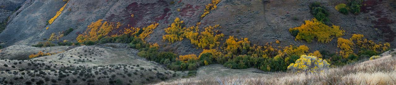 Shingle Creek, Boise Foothills - Idaho