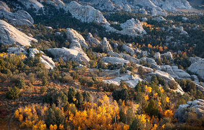 Blue and Gold, City of Rocks - Idaho  When the aspen change color at the City of Rocks - it happens fast. There may only be one week of true fall colors before temperatures plummet, the leaves just turn brown and black, and the winds race across the desert and stripe the zebra-stripped trunks naked.
