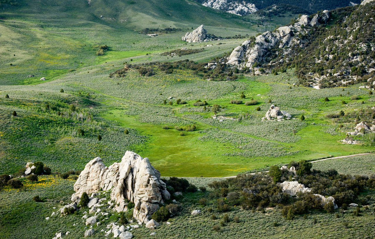 The Breadloaves, City of Rocks - Idaho<br /> <br /> Just North of the Breadloaves rock formation in the City of Rocks, Idaho. For a few weeks each year, the wet spring transforms an otherwise ochre desert into a lush lawn of grasses and flowers.